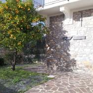 Appartamento Ulivo